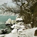 Зима Нового Света Фотография