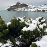 Новый Свет зимой капчик в снегу