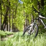Прокат велосипедов в Судаке