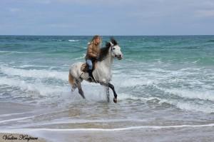 Катание на лошади на пляже по морю