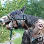 Ржи как лошадь:)