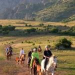 Прогулка на лошадях в Судаке