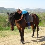 Лошадь На фоне Судака