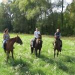 Катание на лошадях в лесу