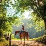 Прогулка на лошади в Судаке