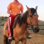 На лошади катание в Судаке