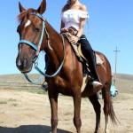 Меганом фото лошади