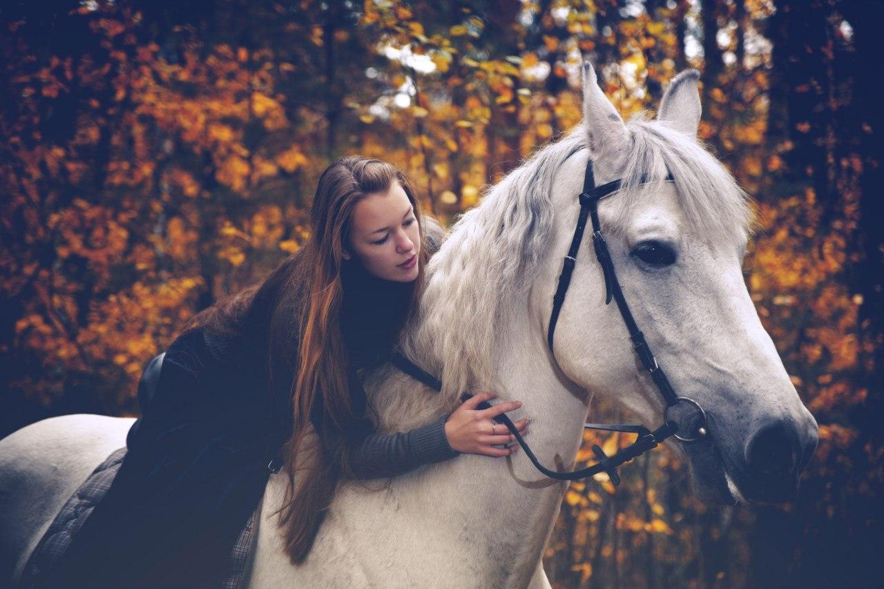 Беременной приснилась езда на коне к чему