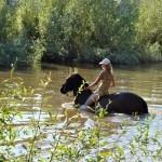 Прогулка на лошади в озере