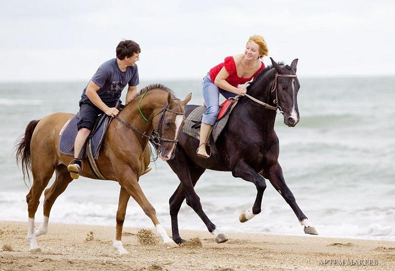 Как правильно сидеть на лошади Мастер-класс в проекте
