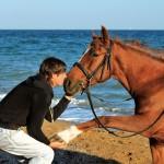 Лошадь на пляже
