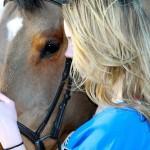 Вместе с конем